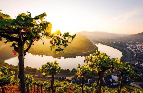 Rhein Romantik mit der Mosel