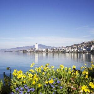 Herbstgenüsse am Genfer See